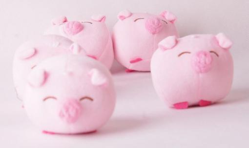 生猪波动一个点多少钱?生猪期货合