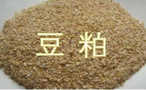 豆粕期货是属于热门品种吗?豆粕开