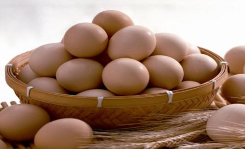鸡蛋期货行情分析及鸡蛋手续费标准